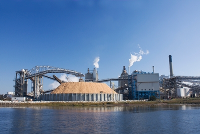 pulp and paper manufacturing
