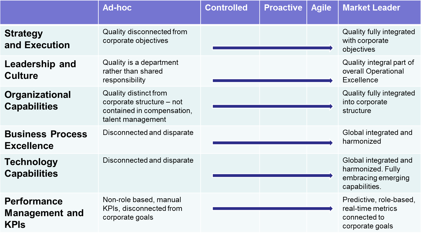 lns research quality maturity model