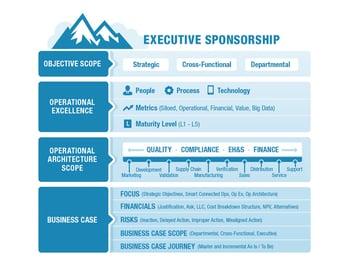 Executive Sponsorship