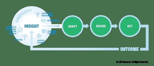 LNS: The Digital Innovation Cycle